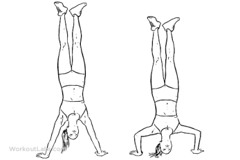 handstand_push-up_f_workoutlabs